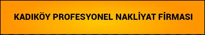 kadıköy profesyonel evden eve nakliyat